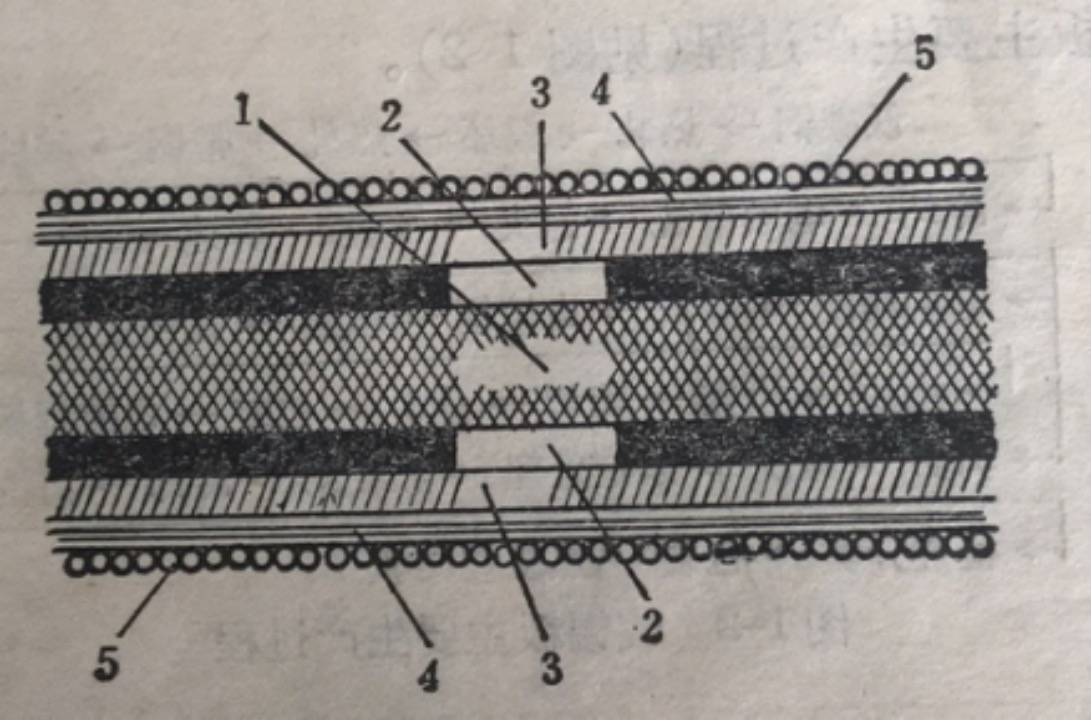 Figure 1-1 Sectional view of tin plate